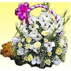 Attractive Orchid Basket