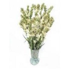 long stream Tuberoses  in a vase for valentine(20 pcs)